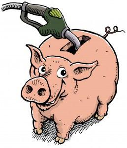 schweinchen_ohne_saeule2_3 copy